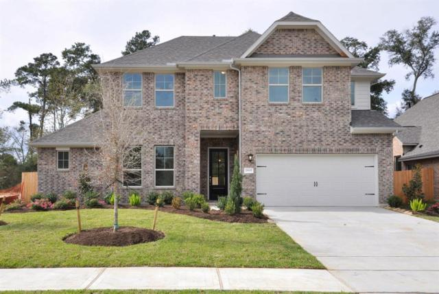 25315 Pinyon Hill Trail, Tomball, TX 77375 (MLS #31299901) :: Texas Home Shop Realty