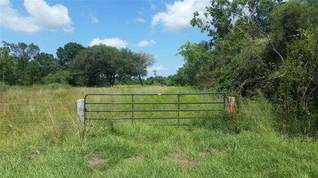 101 Sh 288 B, Angleton, TX 77515 (MLS #31325028) :: Connect Realty