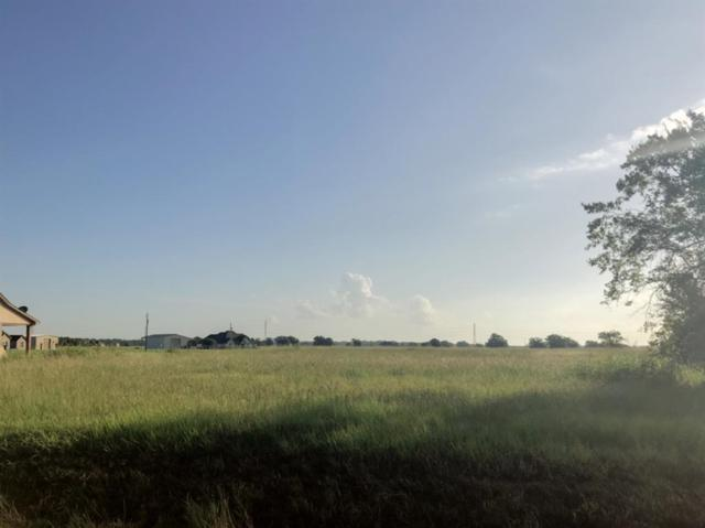 620 Quarter Horse Trail, Angleton, TX 77515 (MLS #31496014) :: The SOLD by George Team
