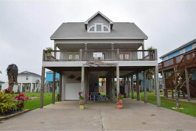867 Palmetto Drive, Crystal Beach, TX 77650 (MLS #31503567) :: The Queen Team