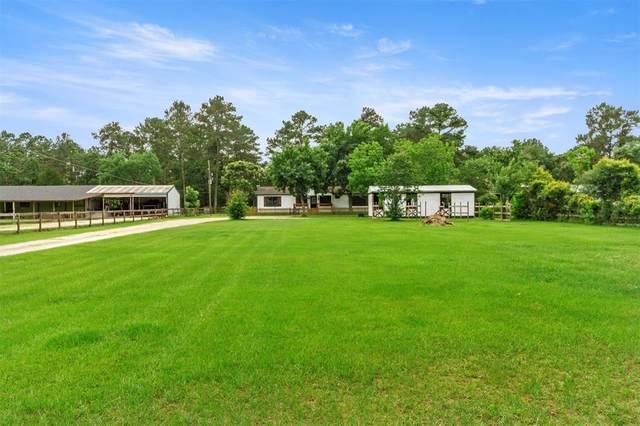 19303 Turtle Creek Lane, Magnolia, TX 77355 (MLS #31570812) :: The SOLD by George Team