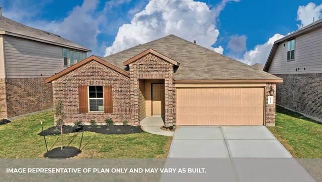 13005 Ocean Breee Lane, Texas City, TX 77591 (MLS #31596462) :: Christy Buck Team