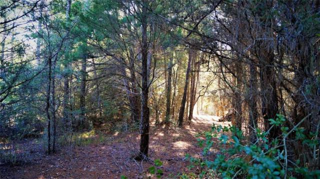 LOT 3 Wood Forest Drive, New Waverly, TX 77358 (MLS #31598500) :: Mari Realty