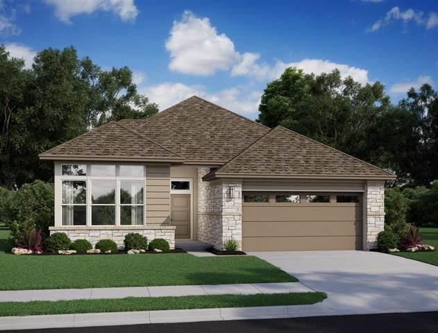 1009 Open Sky Drive, Katy, TX 77493 (MLS #31599092) :: Phyllis Foster Real Estate