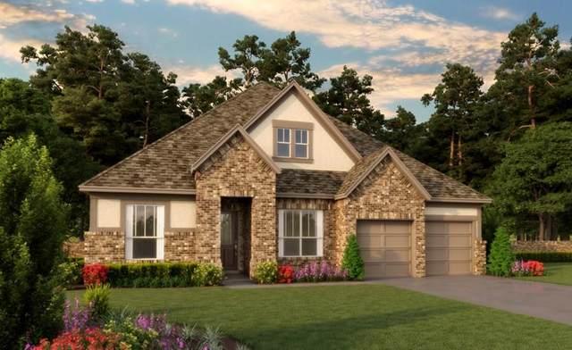 29026 Canyon Oaks Drive, Katy, TX 77494 (MLS #31697869) :: The Home Branch