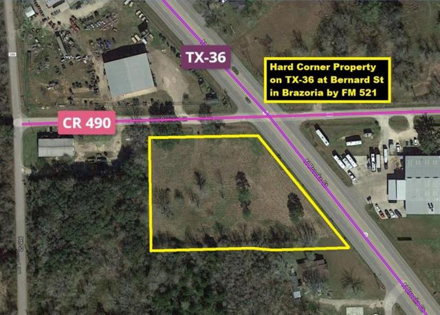 1 Hwy 36 At Cr 490, Brazoria, TX 77422 (MLS #31705575) :: The SOLD by George Team
