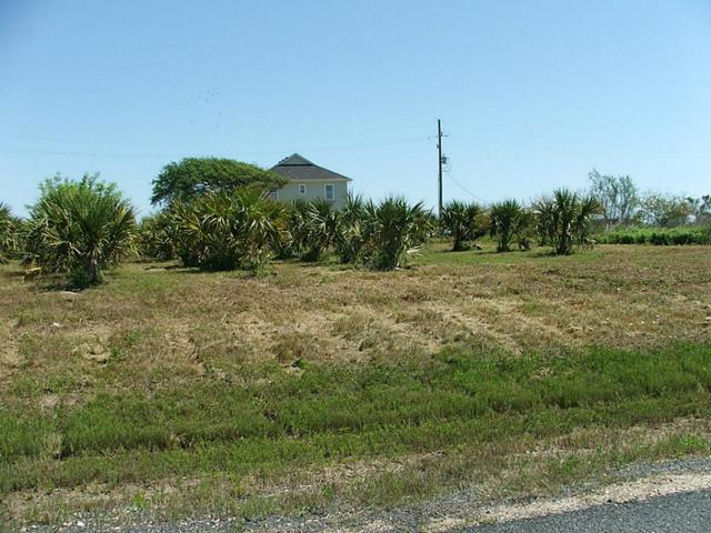 5 LOTS Yacht Basin Road, Gilchrist, TX 77617 (MLS #31727232) :: Giorgi Real Estate Group