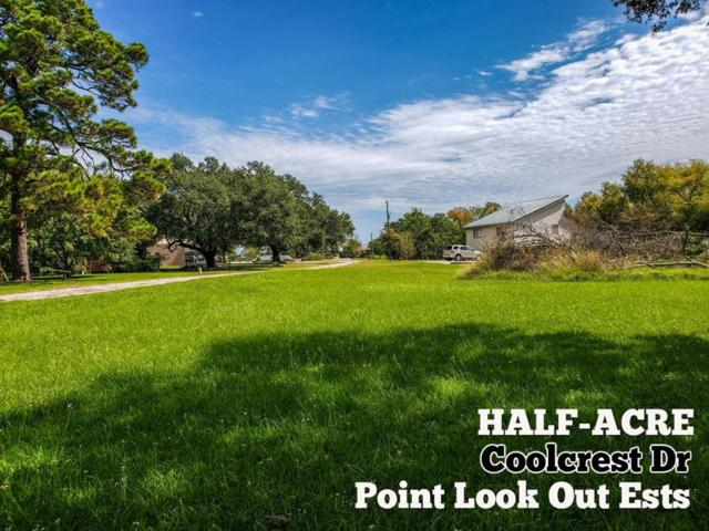 0.5-ac Coolcrest Drive, Point Blank, TX 77364 (MLS #31764545) :: Texas Home Shop Realty