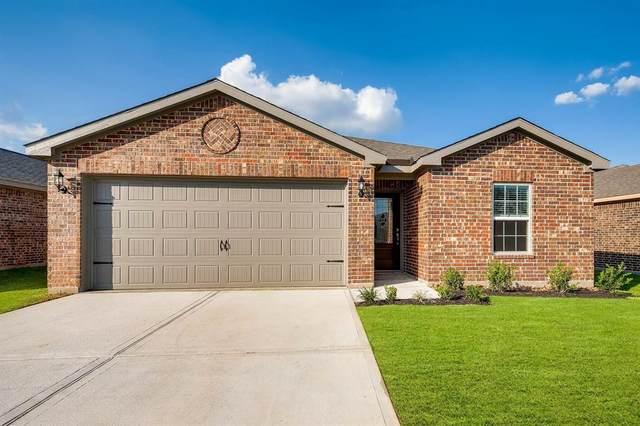 22039 Buffalo Braun Drive, Hockley, TX 77447 (MLS #31772751) :: The Wendy Sherman Team