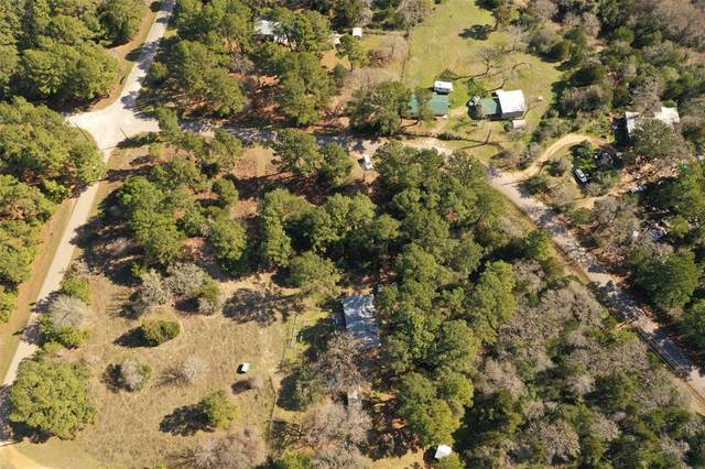 228 Pine Canyon Drive, Smithville, TX 78957 (MLS #31782409) :: The SOLD by George Team