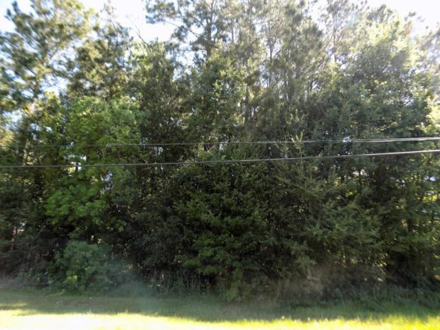18645 Summer Hills Boulevard, Porter, TX 77365 (MLS #31838794) :: Magnolia Realty