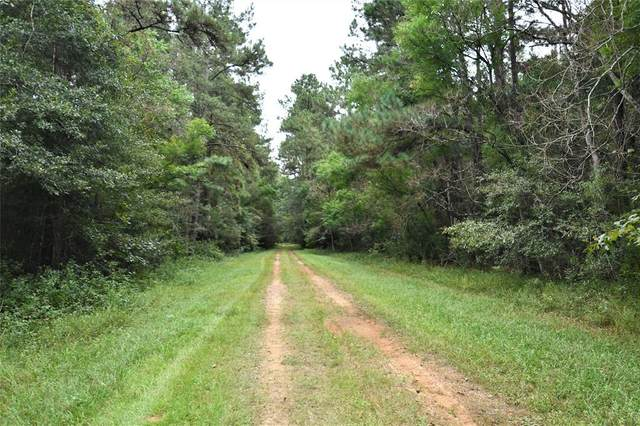 TBD County Road 337, Cleveland, TX 77327 (MLS #32171236) :: Connect Realty