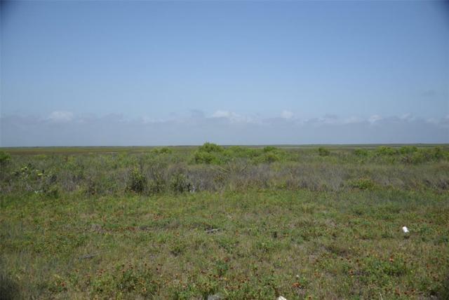 0000000 County Road 257, Surfside Beach, TX 77541 (MLS #32175128) :: Texas Home Shop Realty