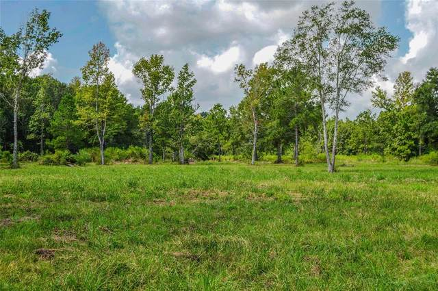 2.24 AC Hwy 321, Cleveland, TX 77327 (MLS #32228224) :: The SOLD by George Team