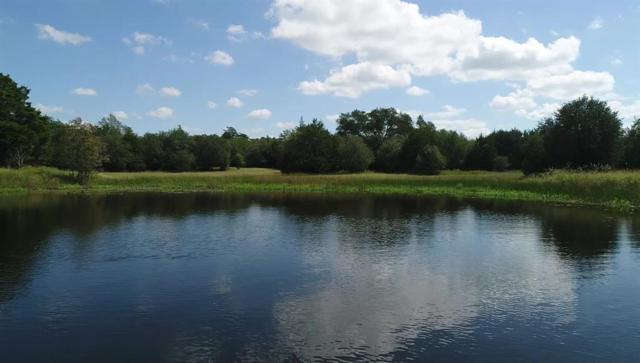 0 Carmine Cemetery Road, Carmine, TX 78932 (MLS #32356508) :: Fairwater Westmont Real Estate