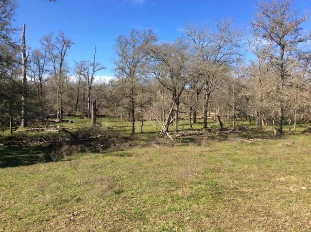 0 County Road 205, Giddings, TX 78942 (MLS #32380222) :: Texas Home Shop Realty