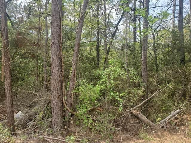 Lot 4 Scarlet Oak Drive, Plantersville, TX 77363 (MLS #32388481) :: Michele Harmon Team