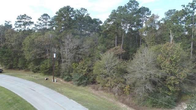 26714 Crossroads Trail, Huffman, TX 77336 (MLS #3240625) :: Guevara Backman