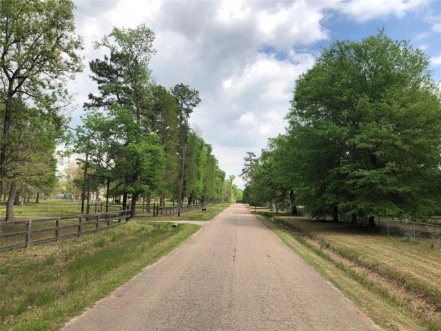 0 Stoltje, Conroe, TX 77306 (MLS #32484673) :: Magnolia Realty