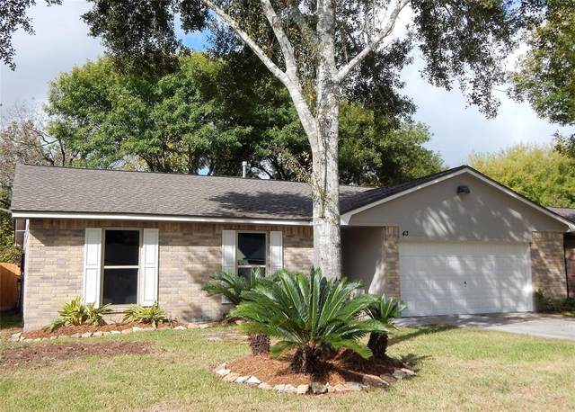 43 Wagon Lane Loop, Angleton, TX 77515 (MLS #32487839) :: Giorgi Real Estate Group
