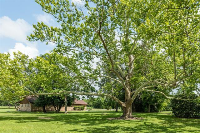 750 County Road 133A, Alvin, TX 77511 (MLS #32615091) :: Texas Home Shop Realty