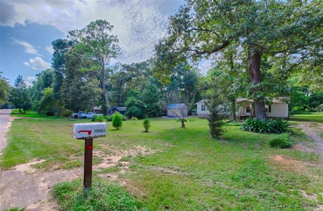 15063 Dogwood Lane, Conroe, TX 77303 (MLS #32671366) :: The SOLD by George Team