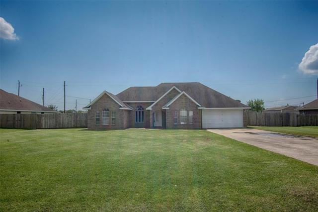 6410 Wildlife Way, Baytown, TX 77523 (MLS #32708194) :: The Johnson Team