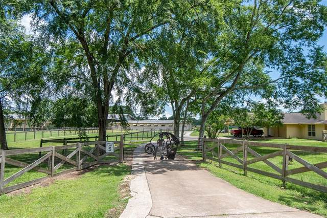 24161 Spring Drive, Hockley, TX 77447 (MLS #32824671) :: Connell Team with Better Homes and Gardens, Gary Greene