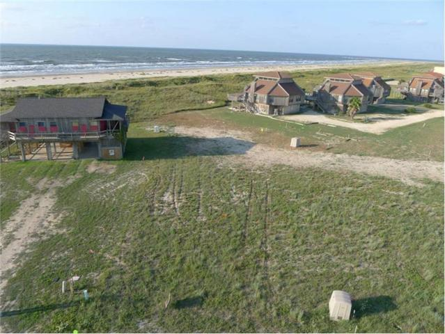0 Driftwood Drive Drive, Matagorda, TX 77457 (MLS #32929562) :: The SOLD by George Team