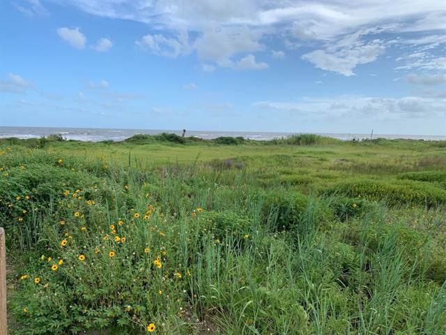 758 Hwy 87, Gilchrist, TX 77617 (MLS #32957625) :: Connect Realty