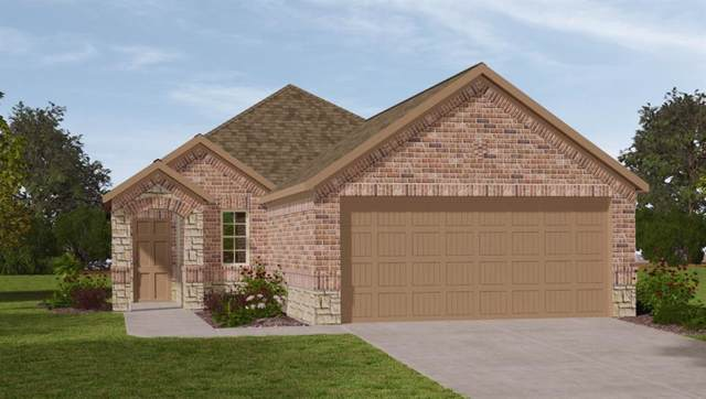 16454 Rosary Pea Place, Conroe, TX 77385 (MLS #33084278) :: Giorgi Real Estate Group