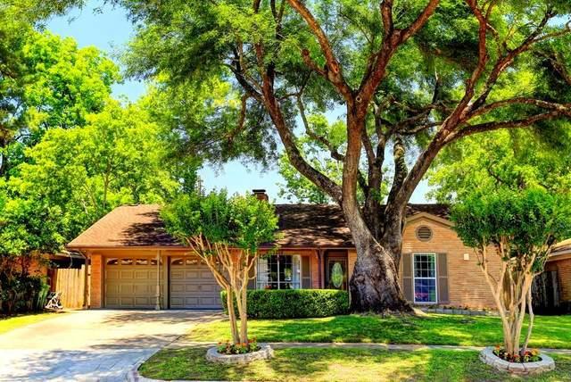 7602 Jackwood Street, Houston, TX 77074 (MLS #33108489) :: NewHomePrograms.com LLC