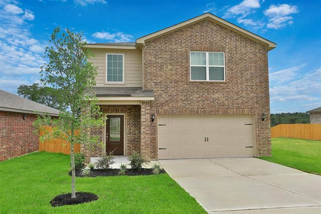 20915 Solstice Point Drive, Hockley, TX 77447 (MLS #33144257) :: The Bly Team