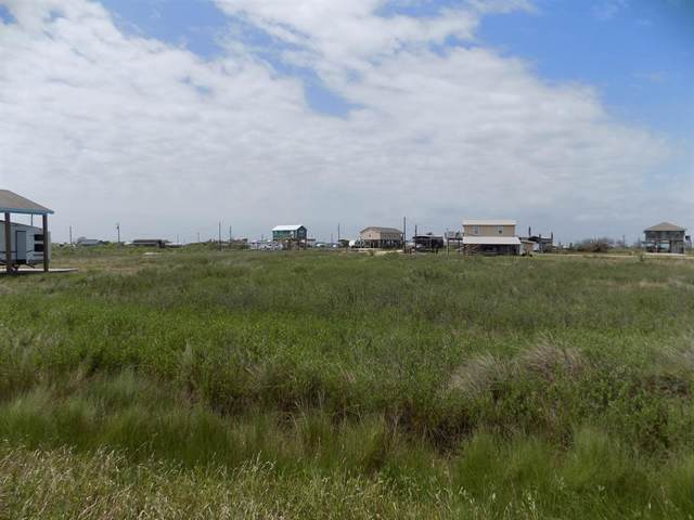 14452 & 14453 White Cap, Sargent, TX 77414 (MLS #33170203) :: My BCS Home Real Estate Group