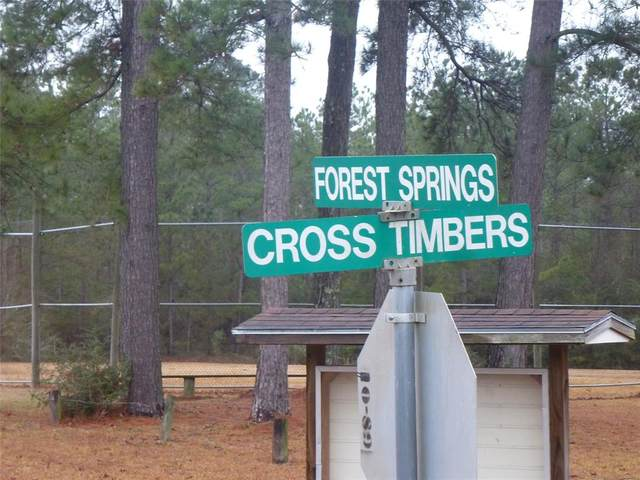 TBD Forest Springs, Livingston, TX 77351 (MLS #33246962) :: The SOLD by George Team