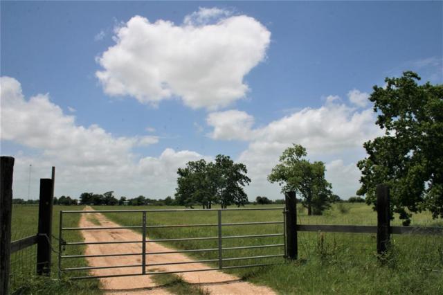 658 Stockold, Sealy, TX 77474 (MLS #33257360) :: Giorgi Real Estate Group