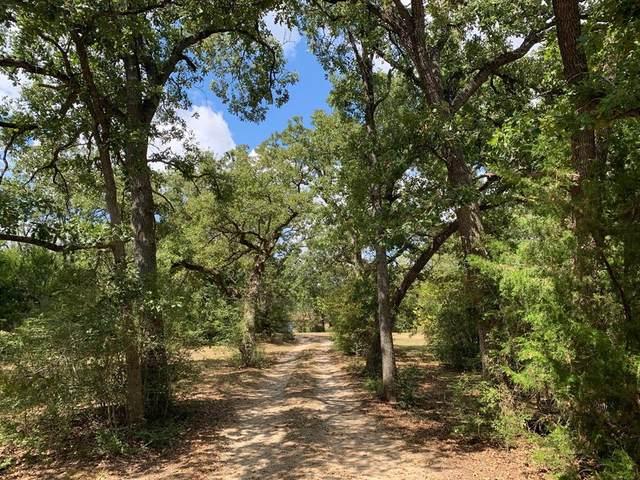 3420 Fm 3371, Groesbeck, TX 76642 (MLS #33331381) :: Len Clark Real Estate