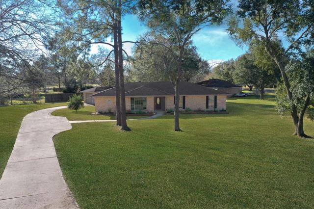1404 Roy Court, Pearland, TX 77581 (MLS #33454288) :: The Heyl Group at Keller Williams