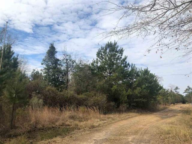450 Private Road 8300, Newton, TX 75966 (MLS #33488057) :: Texas Home Shop Realty