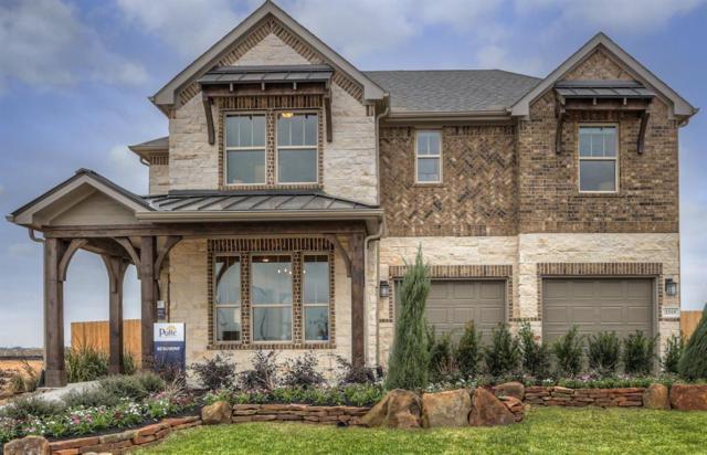 2315 Shoal Valley Lane, Rosenberg, TX 77469 (MLS #33620099) :: Krueger Real Estate