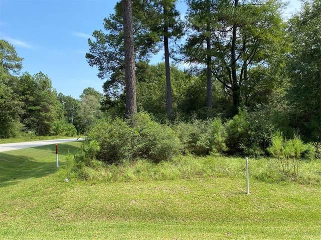 25203 W Tara Plantation Drive, Tomball, TX 77375 (MLS #33646888) :: Green Residential