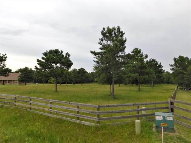 12751 Water Buck Court, Conroe, TX 77303 (MLS #33669612) :: Keller Williams Realty