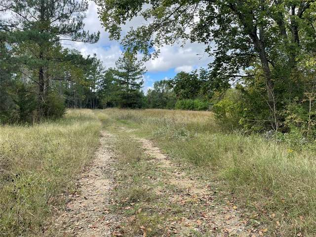 TBD County Road 210 Anderson, Texas  77830, Anderson, TX 77830 (MLS #33692042) :: The Home Branch