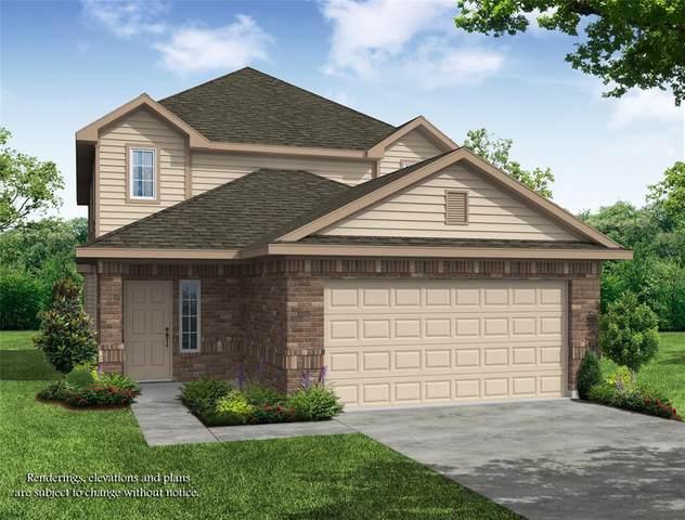 2119 Ethan Drive Drive, Conroe, TX 77301 (MLS #33716191) :: Parodi Group Real Estate