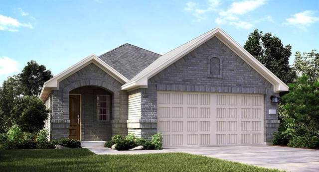 18988 Cicerone Court, New Caney, TX 77357 (MLS #33784908) :: The Home Branch