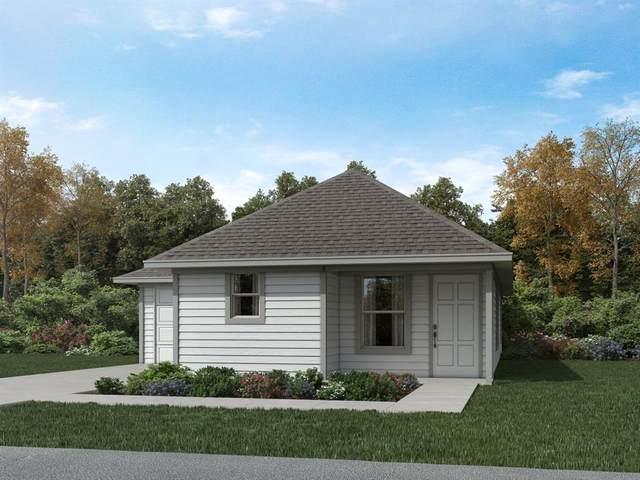 195 Cherry Tree, Livingston, TX 77351 (MLS #33788975) :: Ellison Real Estate Team