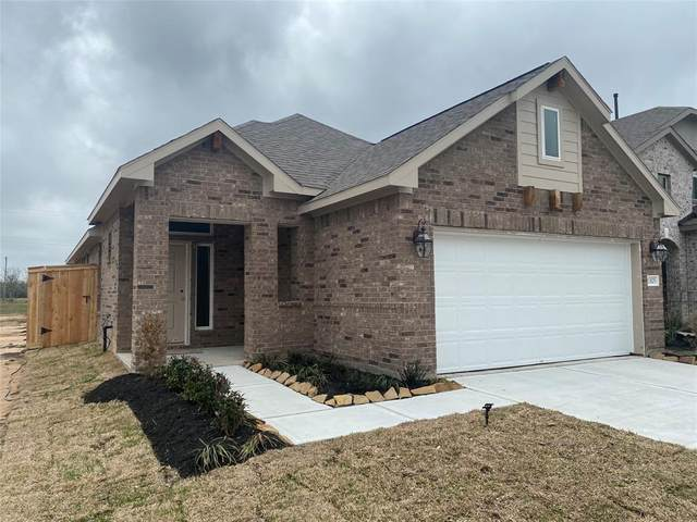 13105 Dancing Reed Drive, Texas City, TX 77568 (MLS #33791977) :: Connect Realty