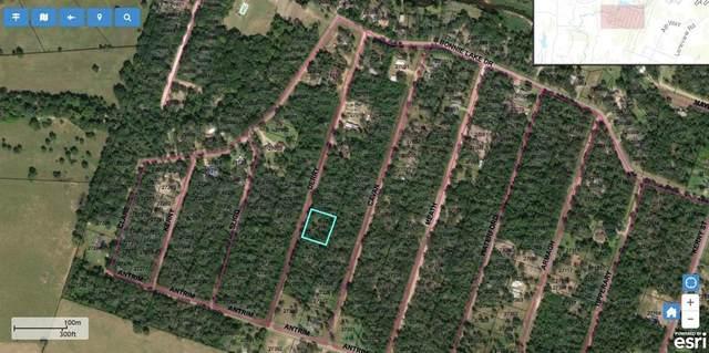 0 Derry St, Hempstead, TX 77445 (MLS #33830710) :: Ellison Real Estate Team