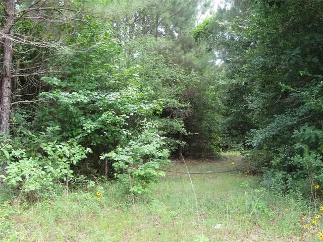 TBD Farm Road 2798, Livingston, TX 77351 (MLS #33857791) :: Ellison Real Estate Team