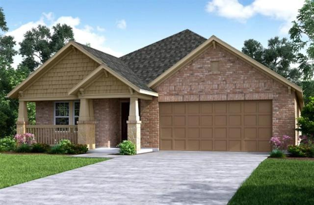 24127 Ivory Sunset Lane, Katy, TX 77493 (MLS #33883595) :: The SOLD by George Team